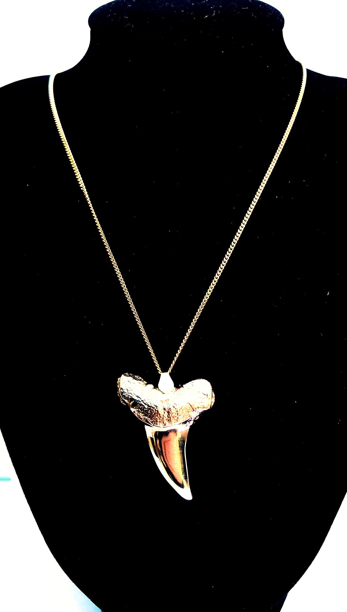 Stunning! Handmade Solid 9ct Great white Sharks Tooth 3.6cm long with 20″ 9ct Curb chain